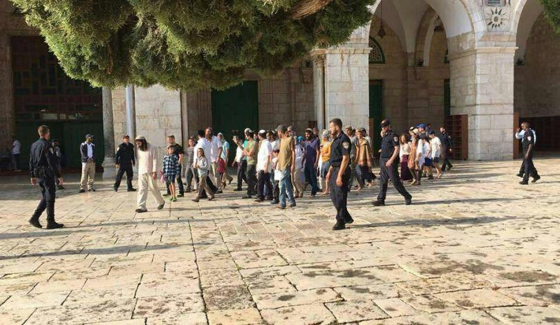 Gerusalemme, 116 coloni invadono al-Aqsa