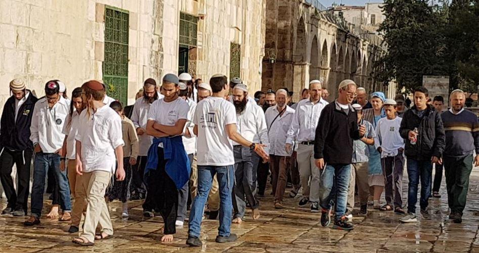Oltre 90 coloni fanno irruzione ad al-Aqsa