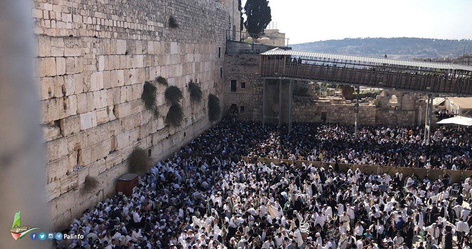 Gerusalemme, migliaia di coloni israeliani per i rituali di Sukkot nella Città Vecchia