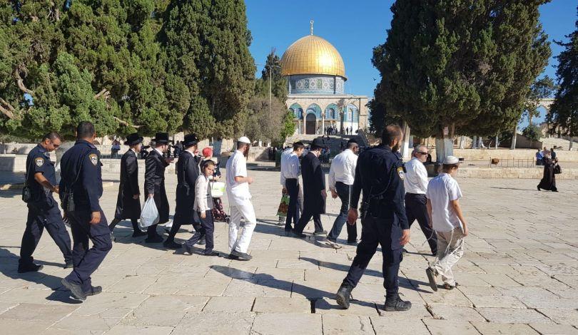 Gerusalemme, 420 coloni invadono al-Aqsa
