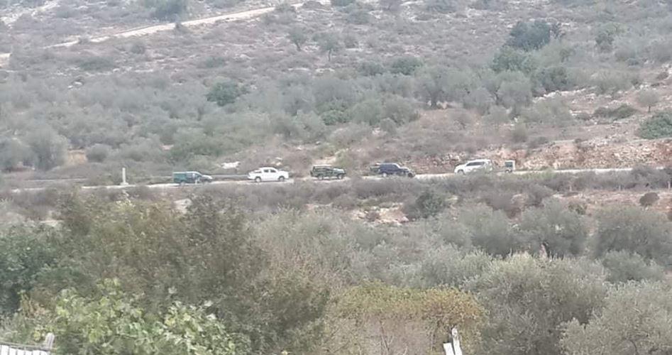 Coloni attaccano oliveti palestinesi vicino a Qalqiliya