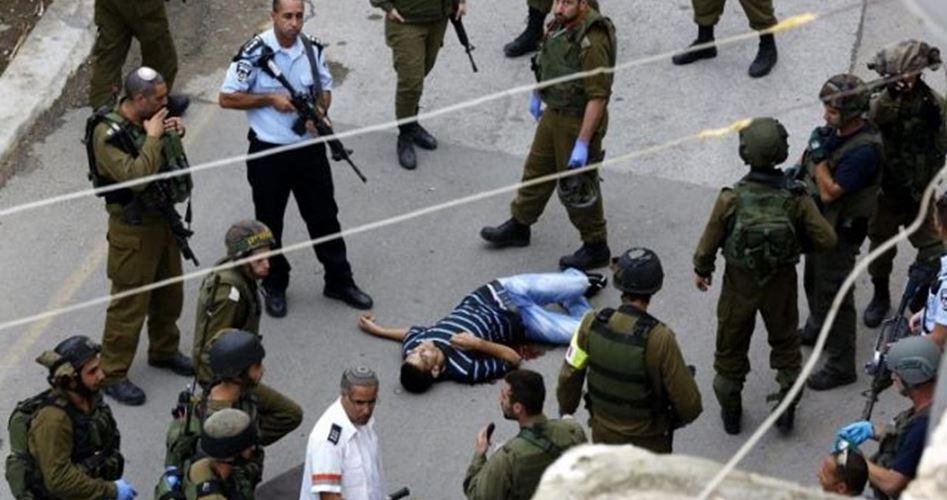Israele ha commesso 2493 violazioni in Cisgiordania a novembre