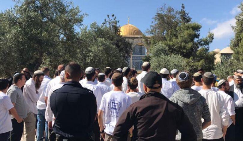 Gerusalemme, oltre 100 coloni hanno invaso al-Aqsa per Hannukah