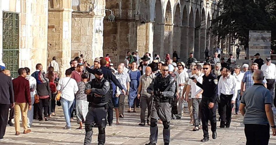 A novembre, 2.020 israeliani, tra coloni e soldati, hanno invaso al-Aqsa