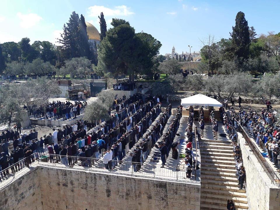 Gerusalemme. 44.000 palestinesi pregano a al-Aqsa