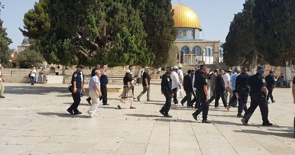 Gerusalemme, orde di coloni invadono al-Aqsa