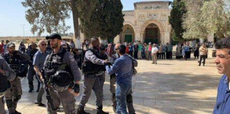 Gerusalemme, domenica oltre 1.179 coloni hanno invaso al-Aqsa