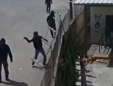 Video riprende coloni mentre attaccano scuola e uliveto