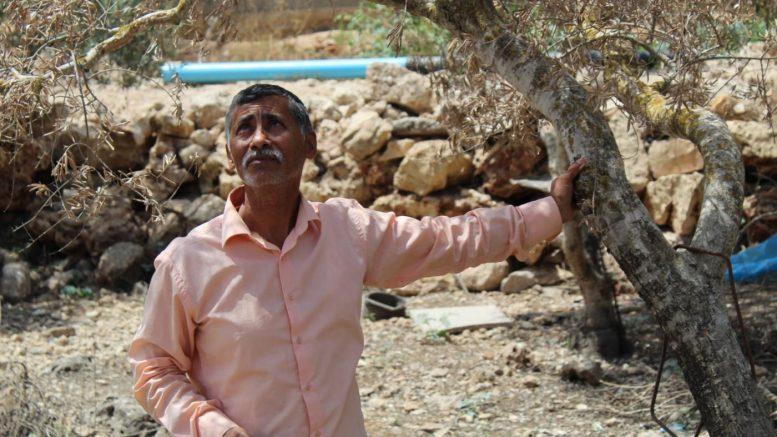'Muoiono e basta': villaggio palestinese soffocato da discarica della colonia israeliana