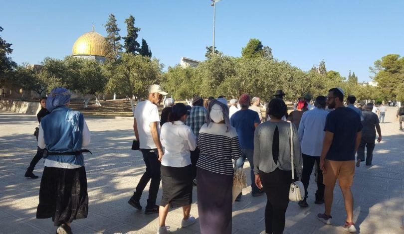 Gerusalemme, la settimana scorsa 471 coloni hanno invaso al-Aqsa