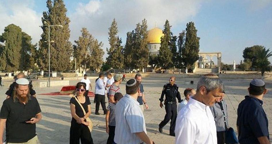 Più di 100 coloni invadono al-Aqsa