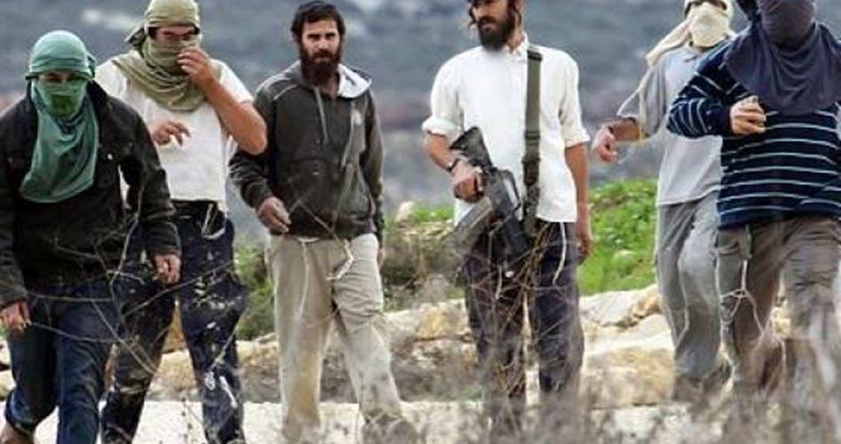 Decine di coloni invadono area archeologica a Beit Ummar
