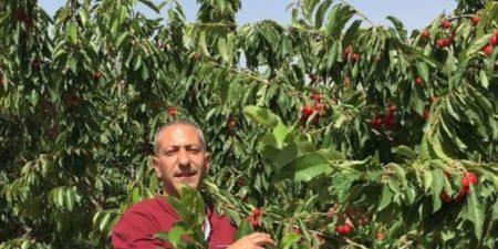 L'OHCHR esprime preoccupazione per la tortura di un prigioniero palestinese da parte di Israele