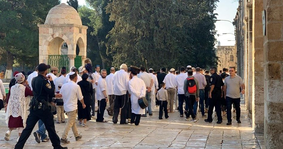 Decine di coloni invadono al-Aqsa