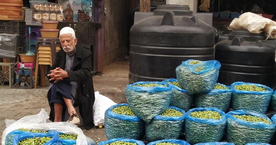 Raccolta delle olive a Khan Yunis: dal campo al mercato
