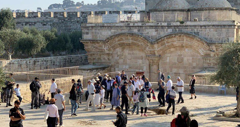 Gerusalemme, decine di coloni invadono al-Aqsa per Hanukkah