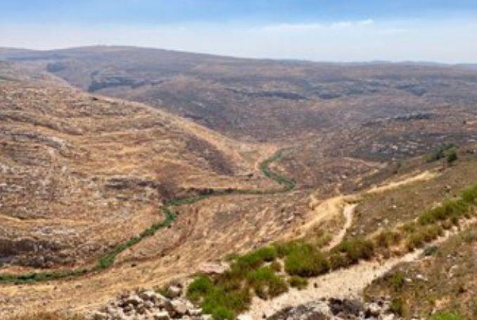 """Israele annuncia approvazione di sette """"riserve naturali"""" in Cisgiordania"""