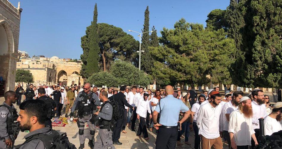 Gerusalemme, 190 coloni invadono al-Aqsa