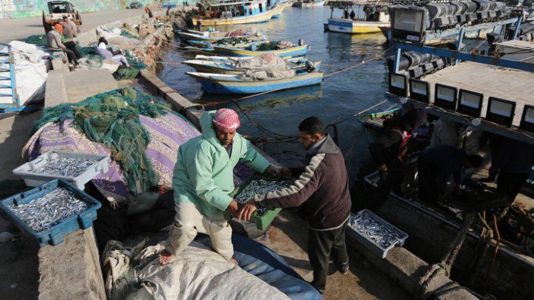 Nel 2019 Israele ha sparato 347 volte sui pescatori di Gaza