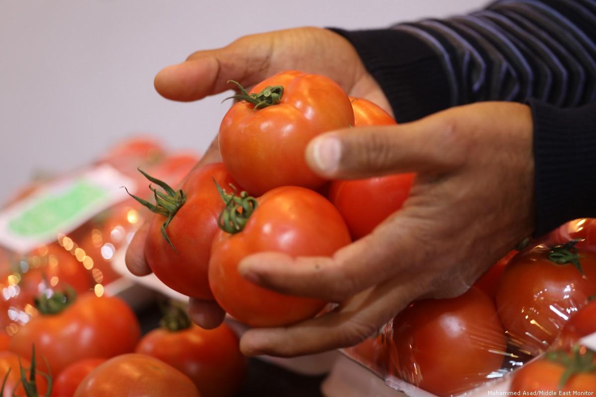 Gaza crea progetto per prodotti agricoli sicuri