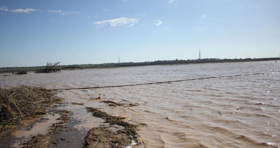 Israele allaga terreni agricoli nella Striscia di Gaza assediata: mezzo milione di dollari di danni