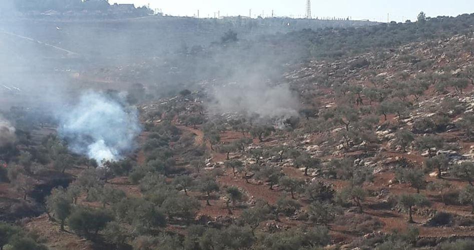 Scontri tra coloni e palestinesi vicino a Nablus