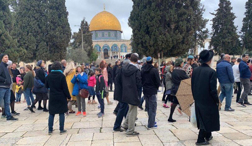 Gerusalemme, 226 coloni hanno invaso al-Aqsa