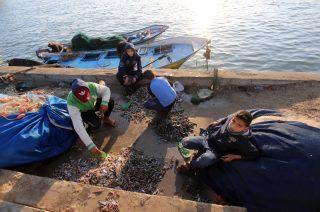 Niente tregua negli attacchi israeliani ai pescatori di Gaza