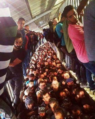 Giornata internazionale dei lavoratori in Palestina