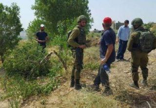 Rapporto: ad aprile, 1015 violazioni israeliane contro i palestinesi
