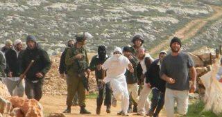 Gang di coloni attaccano cittadine palestinesi