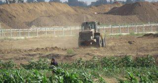 IOF entrano a Gaza con bulldozer, aggrediscono pastori