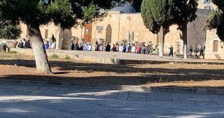 Gerusalemme, gruppi di coloni guidati da Glick hanno invaso al-Aqsa