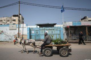 Striscia di Gaza, un milione di Palestinesi in carenza alimentare