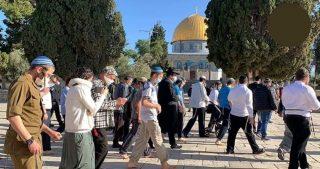 Coloni invadono al-Aqsa scortati dalla polizia israeliana
