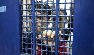 Prigioniero palestinese completa 18 anni in un carcere israeliano