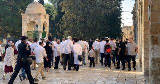 Decine di coloni invadono la moschea di al-Aqsa