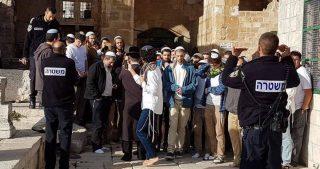 Gerusalemme, 100 coloni invadono al-Aqsa