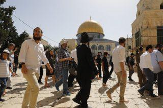 Gerusalemme, 140 coloni invadono al-Aqsa