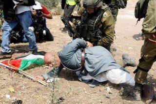 Forze israeliane arrestano cinque palestinesi, tra cui un anziano attivista
