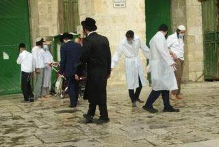 Coloni invadono al-Aqsa sotto scorta della polizia israeliana. Il video
