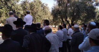Polizia israeliana continua a permettere entrata di coloni ad al-Aqsa