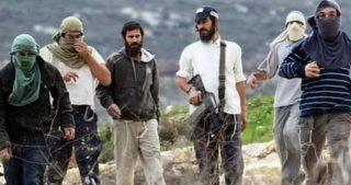 Coloni danneggiano campi e aggrediscono cittadini palestinesi in Cisgiordania
