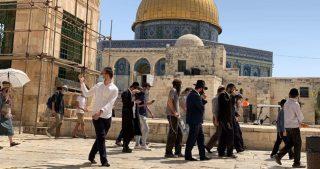 Coloni invadono al-Aqsa sotto scorta della polizia
