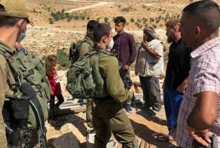 Report: i coloni lanciano attacchi sistematici alle proprietà palestinesi