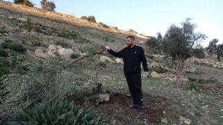 """""""Fino al mio ultimo respiro"""": palestinesi di Gerusalemme difendono la terra dai bulldozer di Israele"""