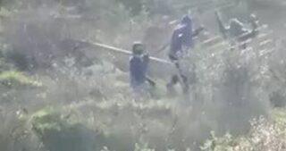 Coloni di Yitzhar distruggono e sottraggono recinto agricolo nella città di Burin