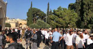 Decine di coloni invadono al-Aqsa sotto scorta della polizia