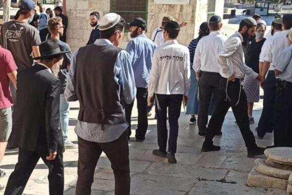 79 coloni invadono al-Aqsa sotto scorta della polizia