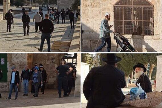 140 coloni invadono al-Aqsa